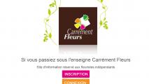 http://www.olvani.com/wp-content/uploads/2014/11/Carrément-Fleurs-_-Le-réseau-des-partenaires_2015-08-25_19-26-06-213x120.png